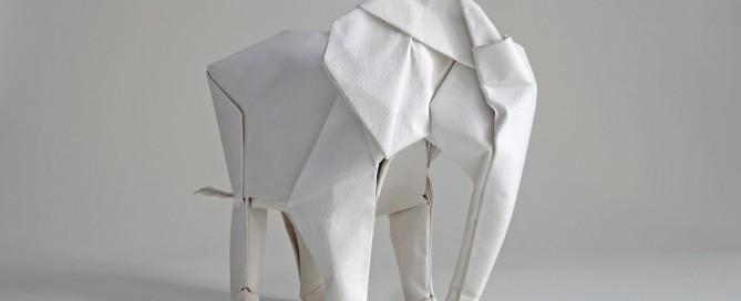white elephant (Sipho Mabona)